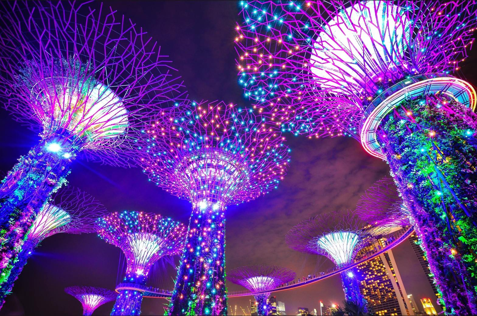 Supertree Grove at Gardens by the Bay Singapore